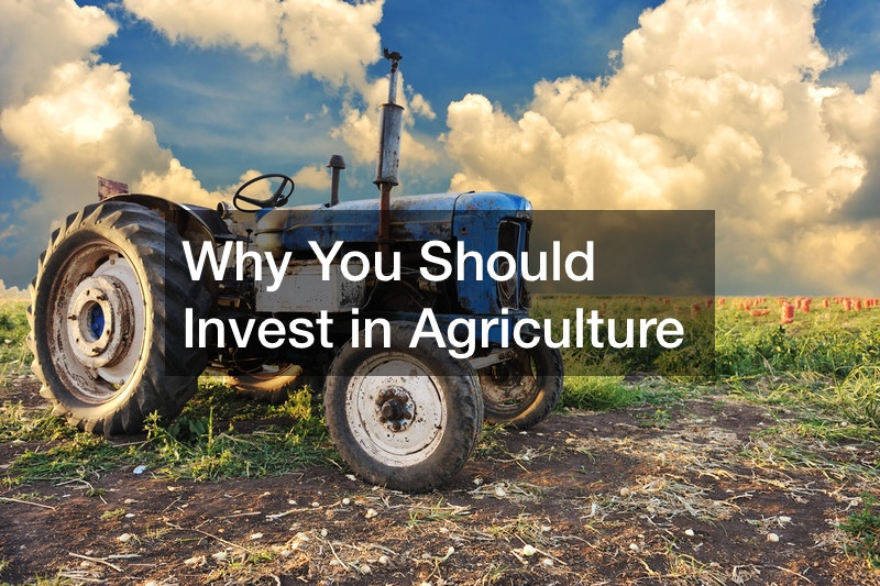 Why You Should Invest in Agriculture